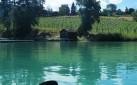 Kal-Lake